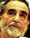 Vittorio Gassman Portrait